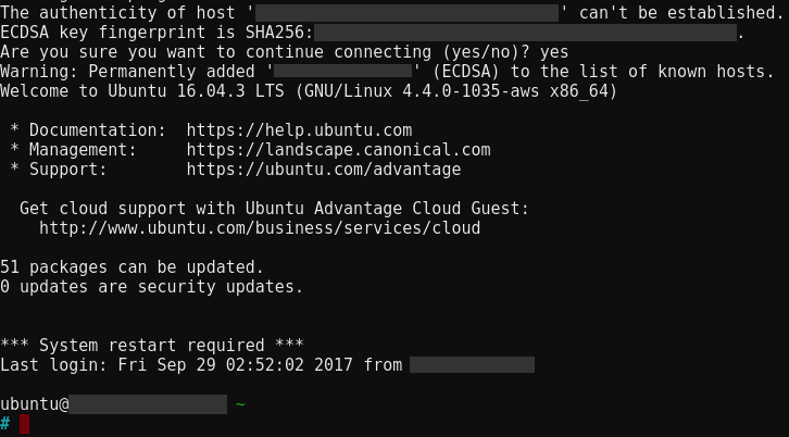 Initial SSH session into Lightsail instance